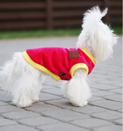 Veliūrinė palaidinė - džemperis