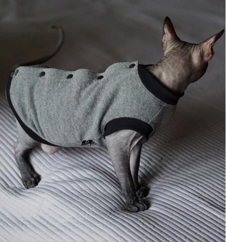 Džemperis - švarkelis sfinksui