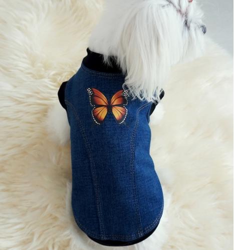 Džemperis su drugeliu